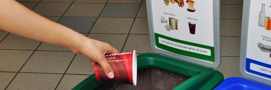 Organics Coffee Cup