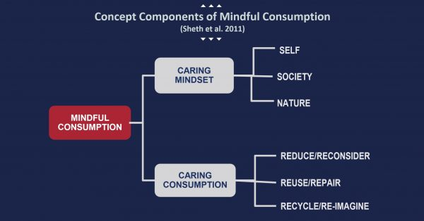 Concept Components of Mindful Consumption - A graph depicting how we mindful consumption effects other behaviour.