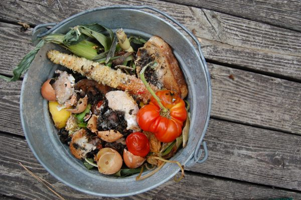 Photo of a pail of organic food waste.