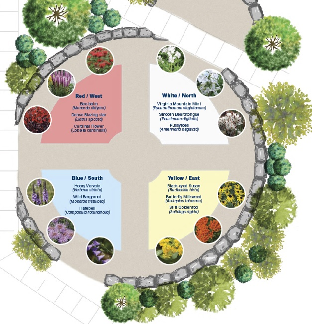 Infographic of the breakdown of what is planted in each sector of the garden.